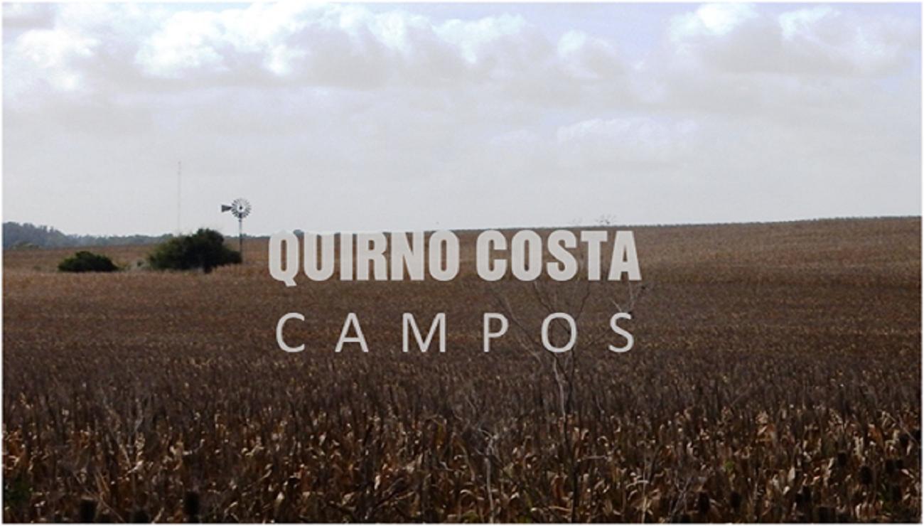 Campo en Sierra de los Padres. 170 has