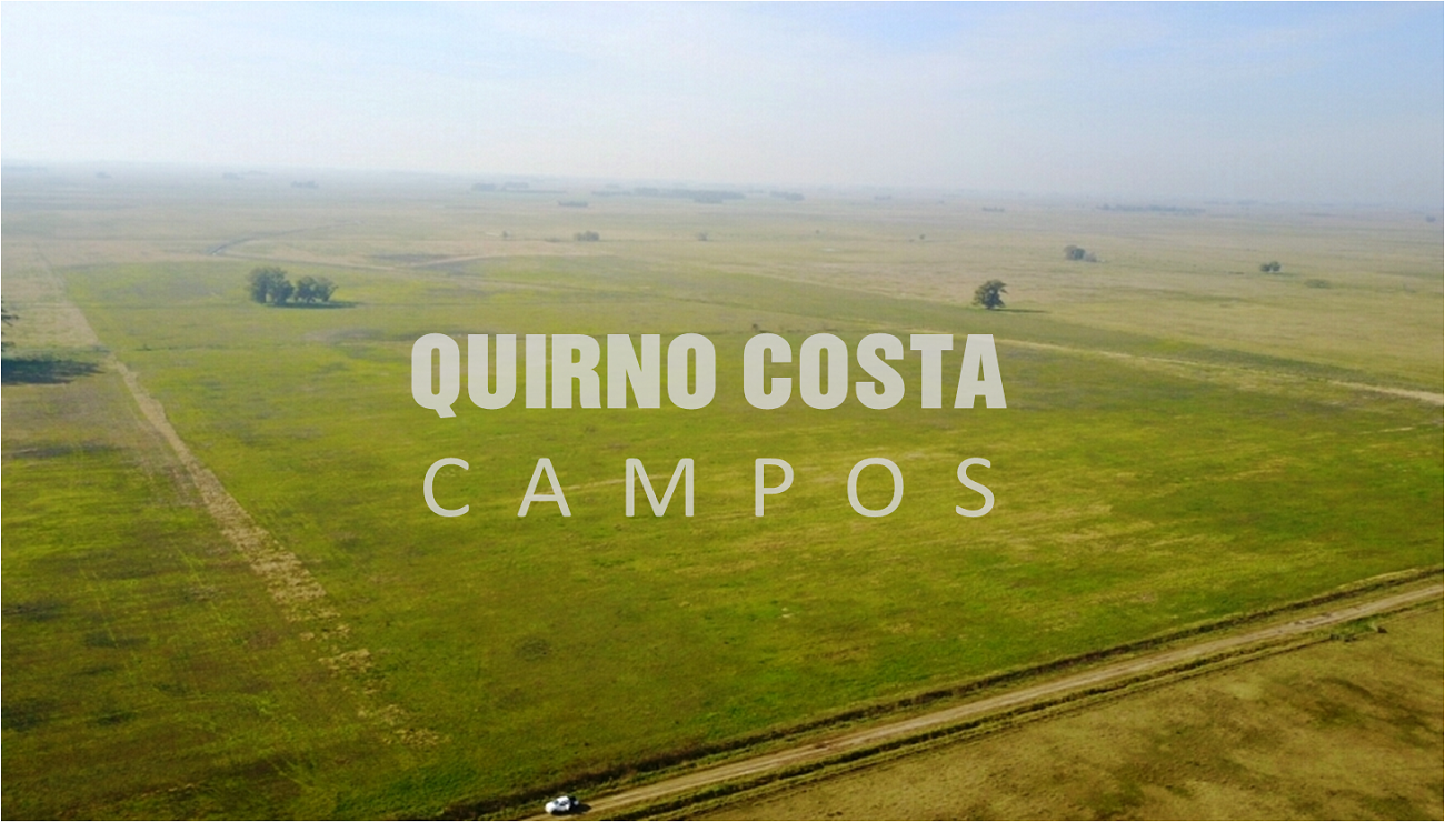 Campo en Suipacha. 83 has